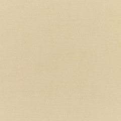 Canvas Antique Beige 5422
