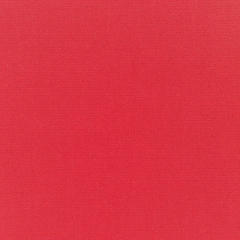 Canvas Logo Red 5477